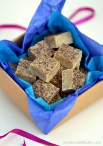 Vanilla Bean Almond Butter Fudge by Dreena Burton, Plant-Powered Kitchen. Photo credit: Emma Potts, coconutandberries.com