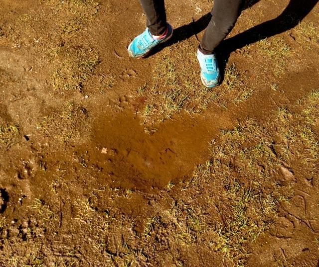heartpuddle