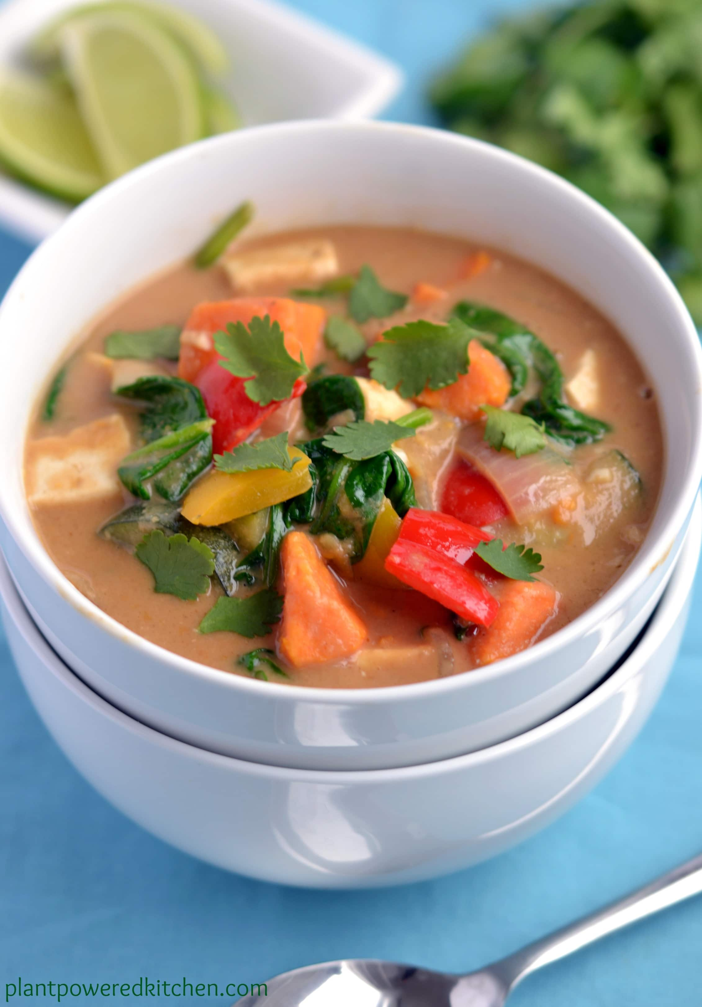 "Peanut Thai Vegetable Stew from ""Let Them Eat Vegan"" by Dreena Burton"