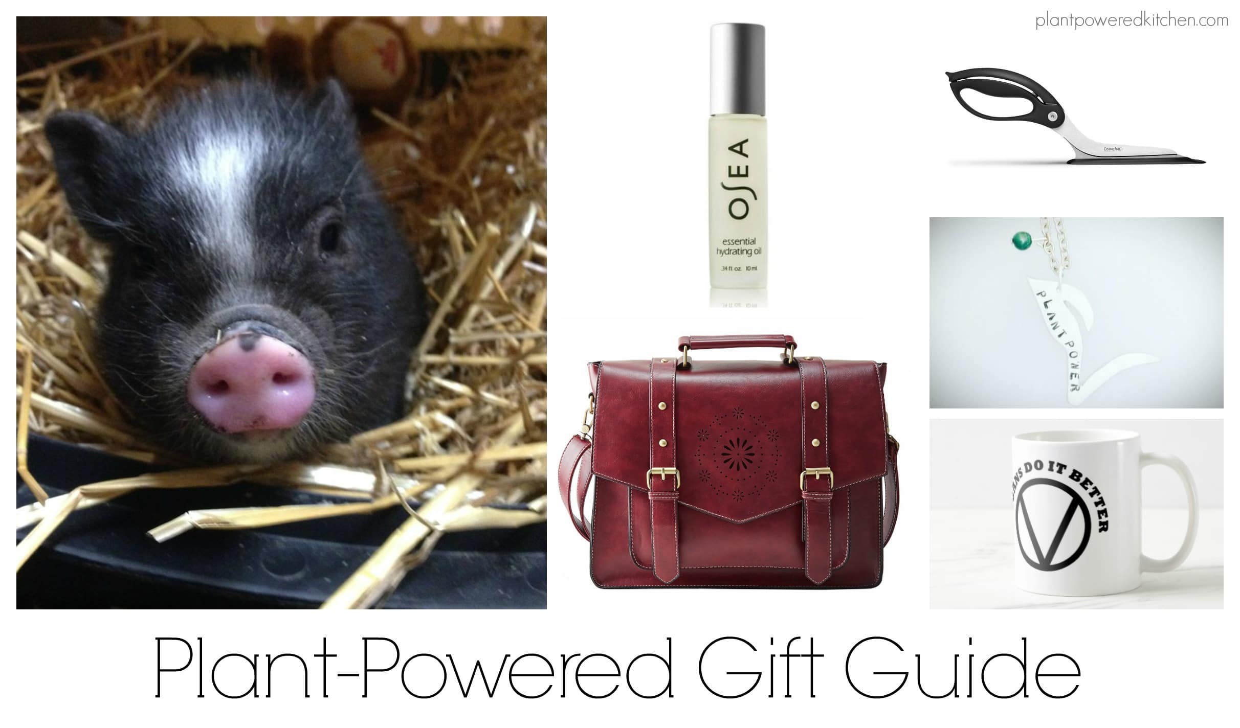 Gifts for Vegans and Plant-Powered Gifts