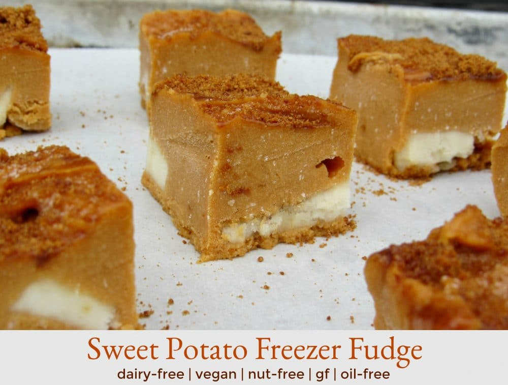 SWEET POTATO FREEZER FUDGE! No dairy, no butter, no white sugar! Vegan, gluten-free, nut-free, and oil-free! | healthy fudge recipes | dairy free fudge recipes | vegan fudge recipes | nut-free fudge recipes | gluten-free fudge recipes | oil-free fudge recipes || Plant Powered Kitchen